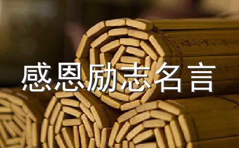 2010感动中国观后感