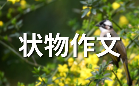 北京400字作文