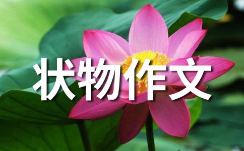 参观苏中七战七捷纪念碑